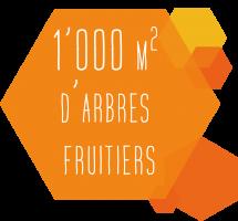 fruitiersFichier 48